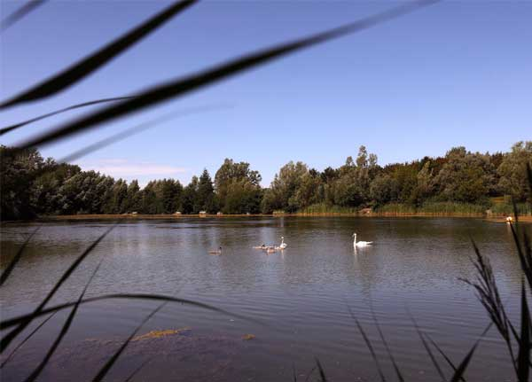 View across the lake at Waterbeach barracks